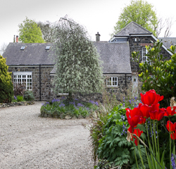 Shola Coach House Bed & Breakfast Accommodation