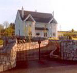 Four Winds B&B Roscommon