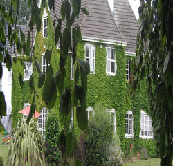 Broadmeadow Country Guest House Meath